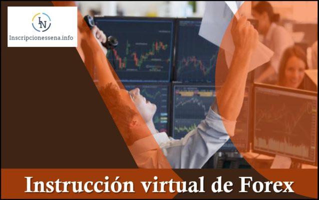 instrucción virtual de Forex